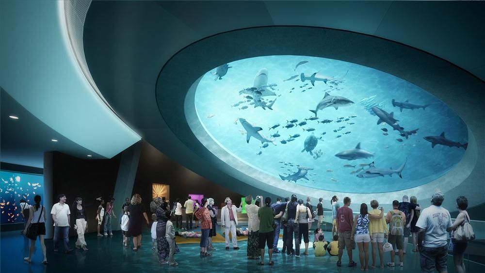 A rendering of the Gulf Stream tank and aquarium area.