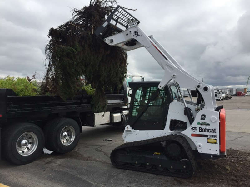Valley Landscaping's skilled operators remove shrubs and landscaping in minutes and load them in a truck for disposal