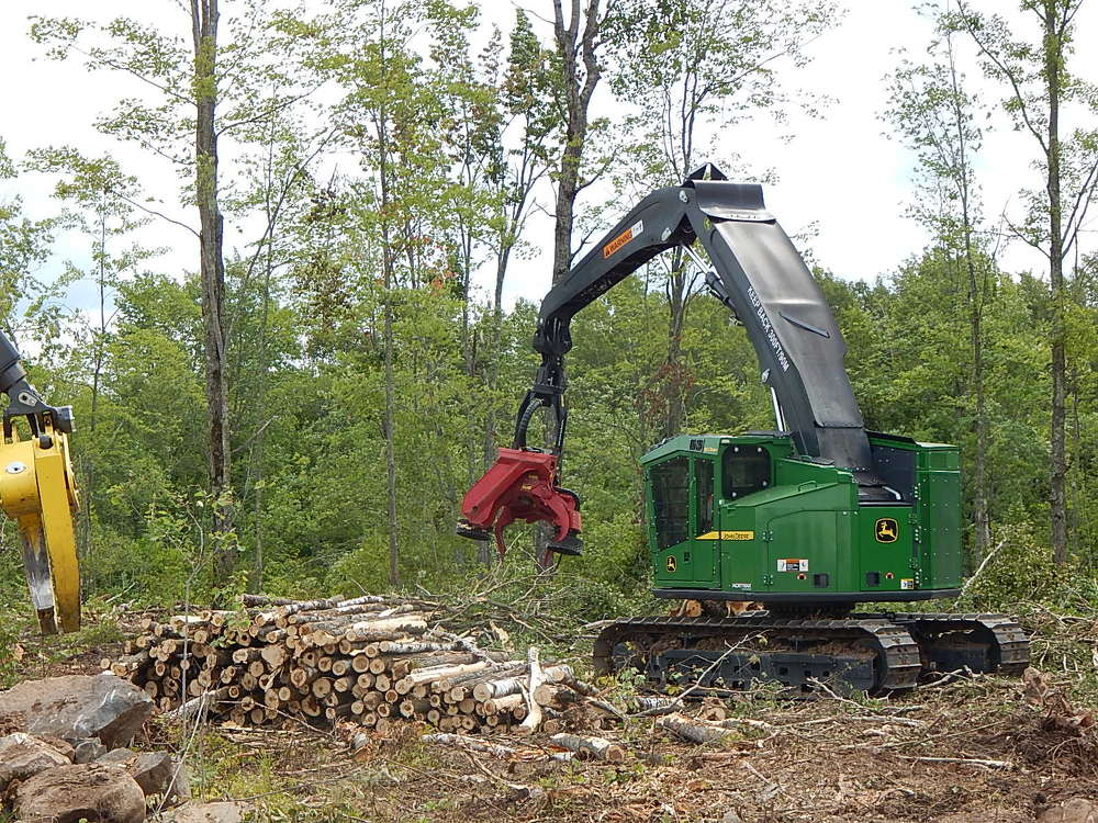 The operator of this John Deere 803 M with a Waratah 623C dangle processing head, strips, cuts and stacks trees in one quick run.