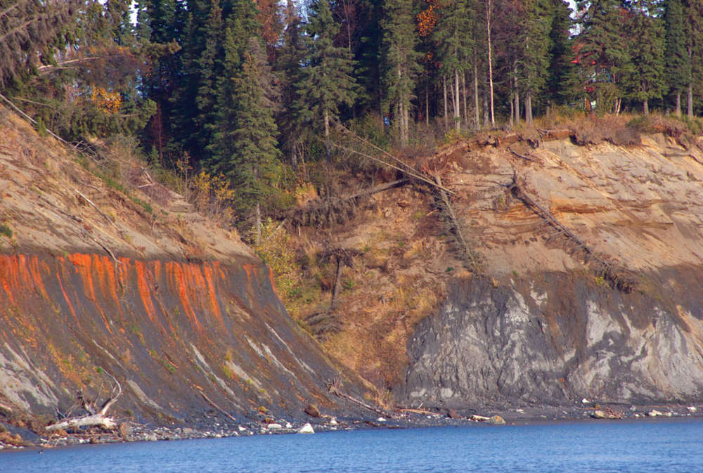 Photo by Jenny Neyman, Redoubt Reporter. A section of bluff in Kenai sloughs off