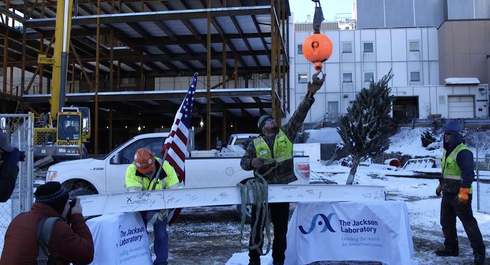 "Officials and crews celebrated the ceremonial ""topping out"" of the new Center for Biometric Analysis at The Jackson Laboratory on Jan. 9."