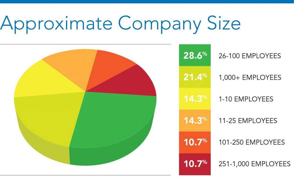 Graph 2- Approx. Company Size