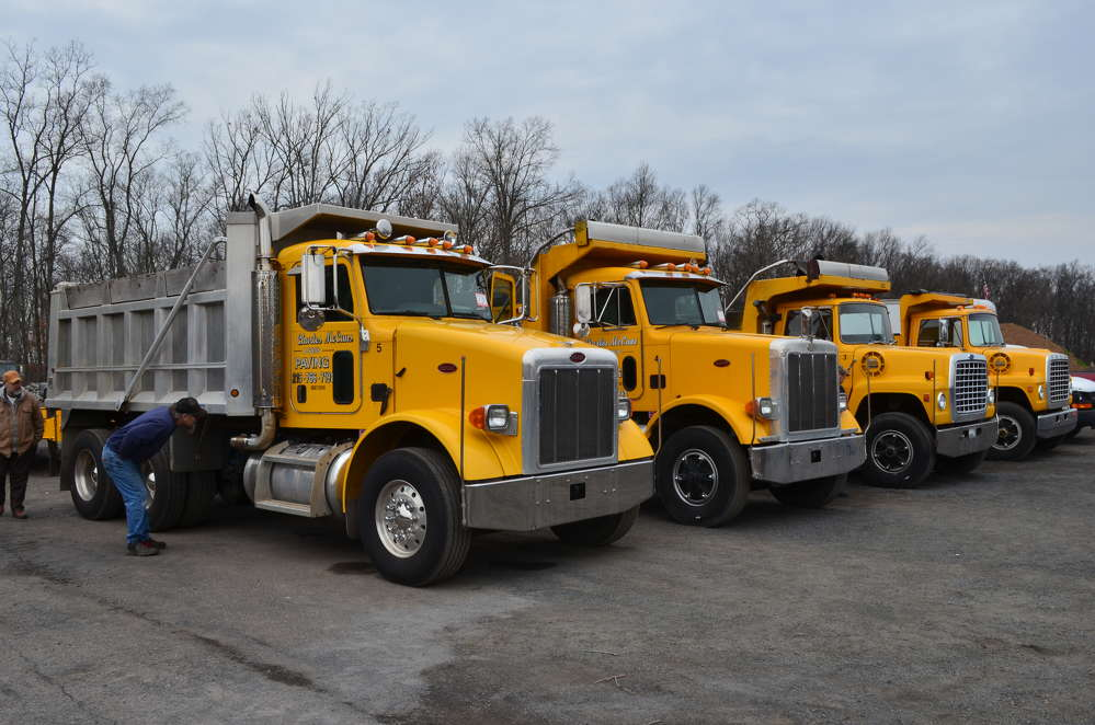 A good selection of dump trucks was available to the highest bidder.