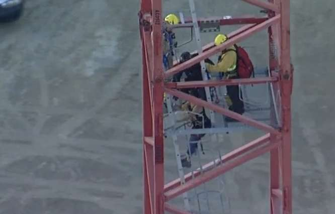 After being locked in the cab of the crane the woman came down with officers in a safety harness.