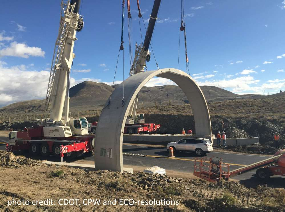 Crews install wildlife crossings as part of the Colorado Wildlife & Safety Improvement Project.