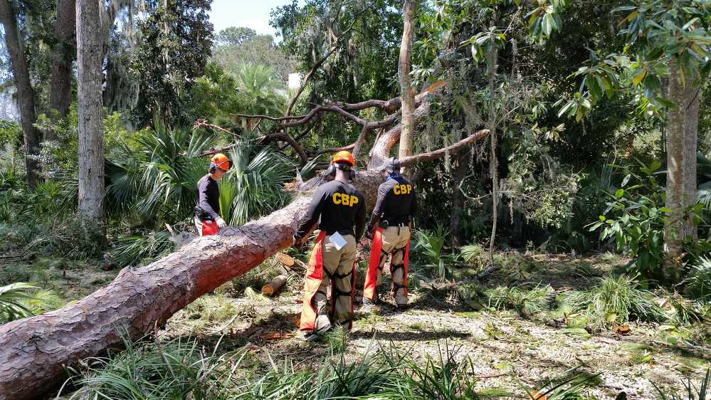 CBP officers from FLETC Field Operations Academy responded to humanitarian and recovery missions in the Brunswick, Ga., area following Hurricane Irma. 