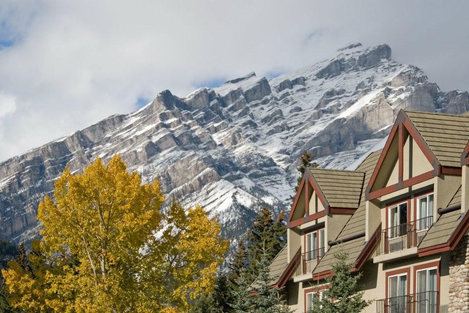 Calgary homes