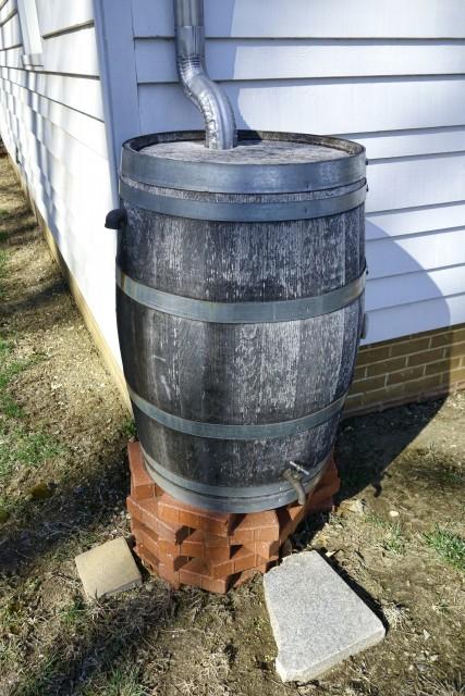 Rainwater Tank Rain Barrel Water Runoff Collector