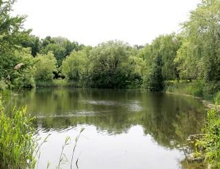 Parc Angrignon