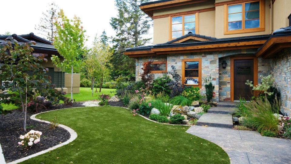 4 No Mow Grass Free Lawns We Love