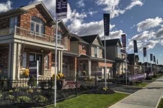Southwestern Ontario: Losani's Pronto on Demand