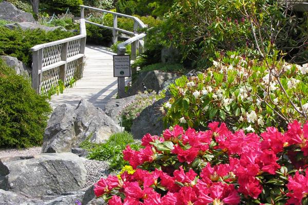 Memorial University Botanical Garden, St. John's