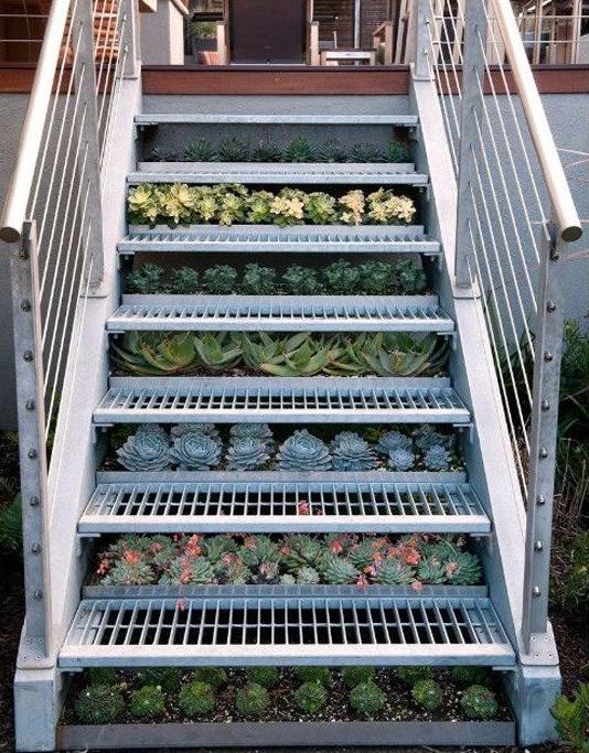 Staircase_Garden