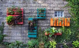 9 ways to start an urban garden