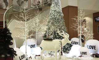 Star quality holiday decor tips