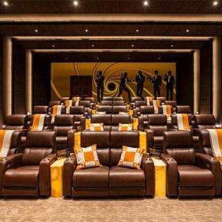 40-seat James Bond-inspired theatre room