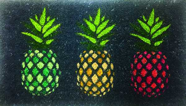 Pineapple Doormat $12 simons.ca