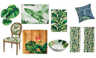 Tropical daydreams and leafy decor