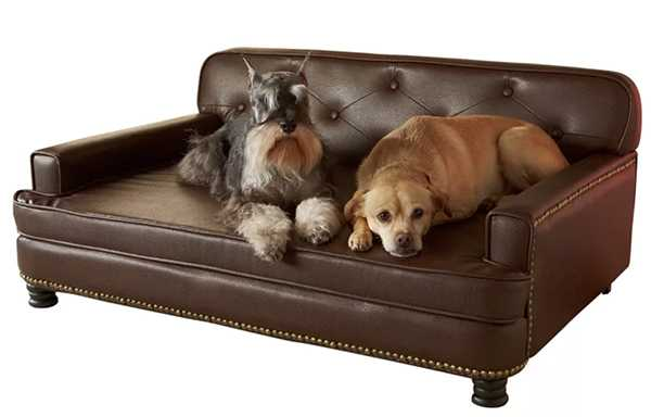 Library Sofa by Enchanted Home Pet $300