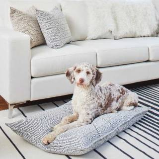 New-Fabric-Dog-Bed
