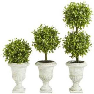 Faux mini boxwood topiary set. $50. pier1.ca