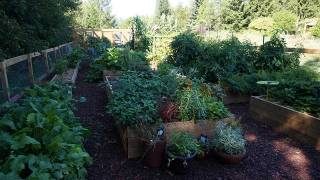 Hottest yard feature – The raised vegetable planter