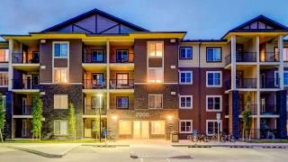 Inside Calgary: What's happening Aug 2019