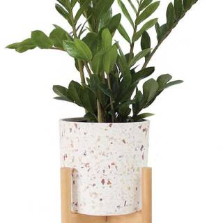 Terrazzo pot n' stand set in medium. $90. residentsupply.com