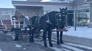 #Inside Ottawa – Dec. 7, 2019