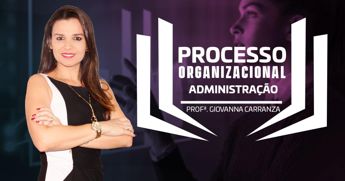 apostila - processo organizacional