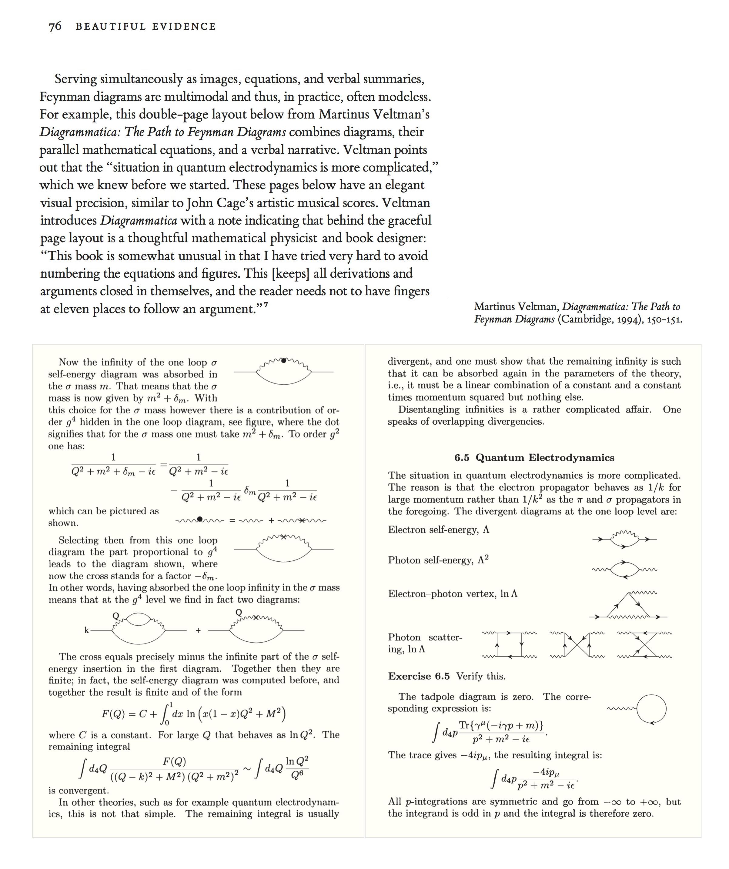 Tufte sparklines Veltman Feynman diagrams