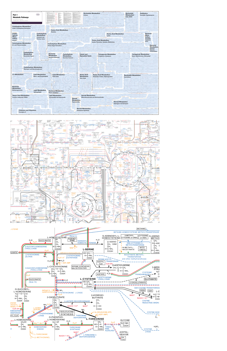 Edward Tufte Forum Design Of Causal Diagrams Barr Art Chart Makes Perfect Certainly Ap Plies To Reading Schematic The Diagram Requires Careful Study While Overall Structure Is Visible At A Distance One Must Zoom In See Individual Links