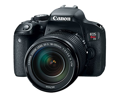 Canon EOS REBEL T7i 24.2MP DSLR Camera with 18-135 Lens Kit