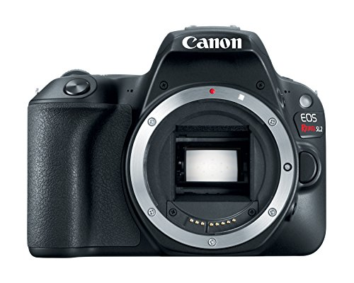 Canon EOS Rebel SL2 24.2MP DSLR Camera - Body Only - WiFi Enabled