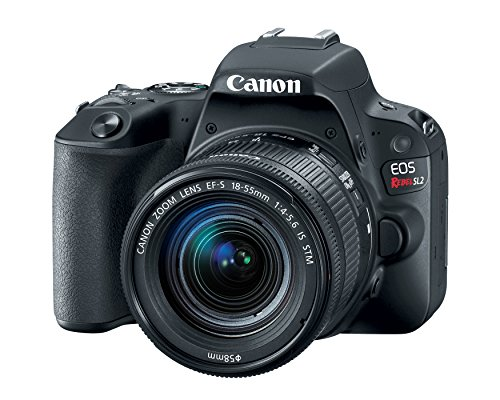 Canon EOS Rebel SL2 24.2MP DSLR Camera with 18-55mm - WiFi Enabled