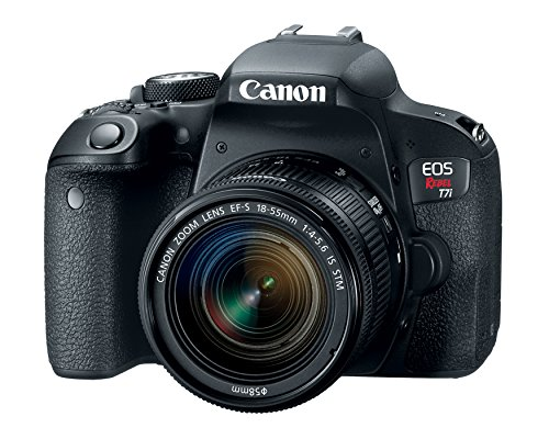 Canon EOS REBEL T7i 24.2MP DSLR Camera with 18-55 Lens Kit