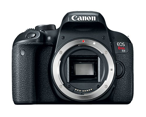 Canon EOS REBEL T7i 24.2MP DSLR Camera -  Body Only