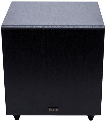 Pioneer Elite SW-E10 Subwoofer - Black Vinyl