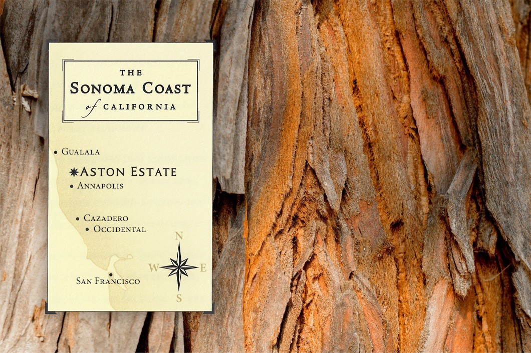 A zoomed in picture of a Redwood tree bark with a map of the Sonoma coast layered on top of it