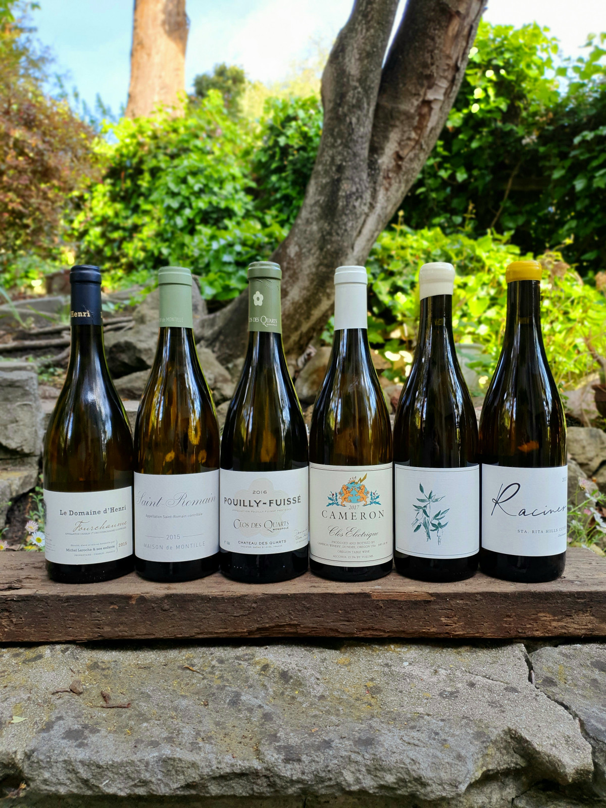 Chardonnay Here & There 6pk 6 Chardonnays from some of best Old and New World terroirs. - Beaune Imports