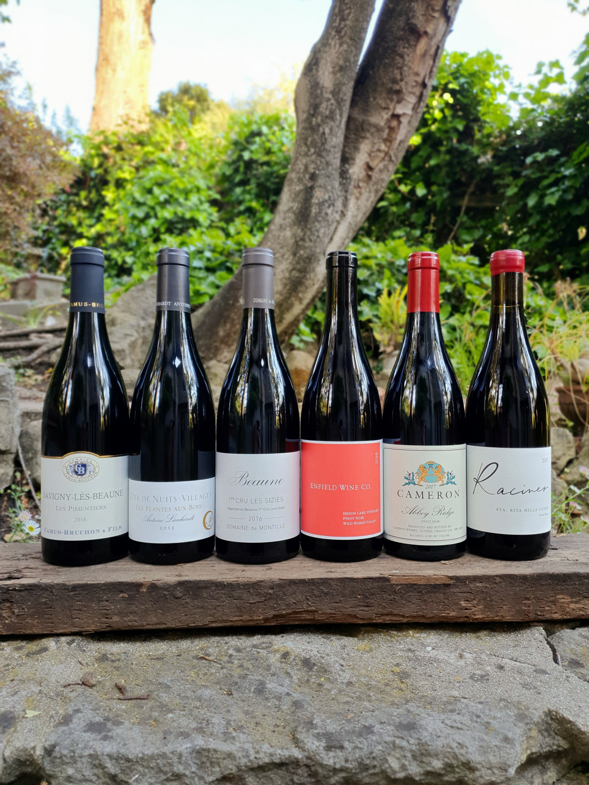 Pinot Noir Here & There 6pk 6 Pinot Noirs from some of the best Old and New World terroirs. - Beaune Imports