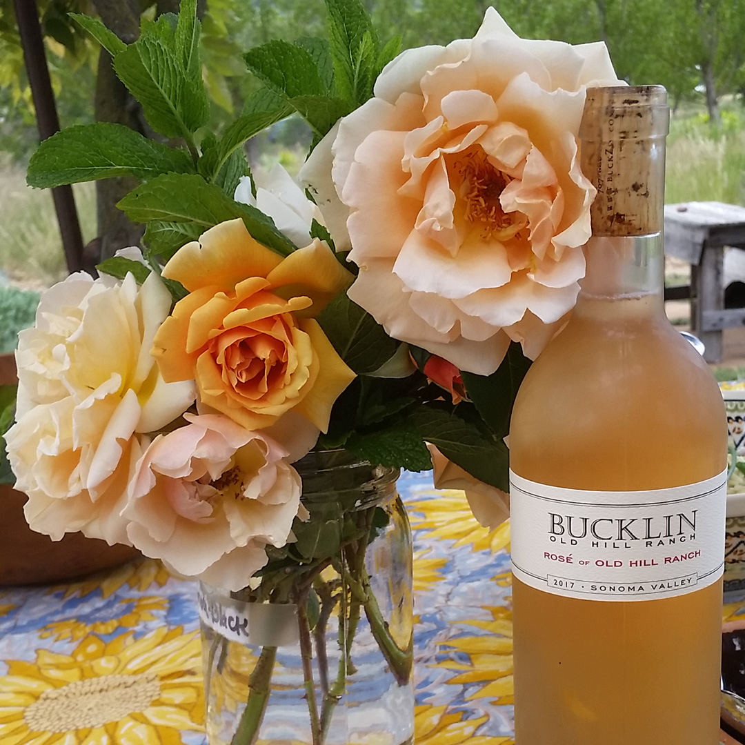 2019 Rosé of Old Hill Ranch  - Bucklin Old Hill Ranch