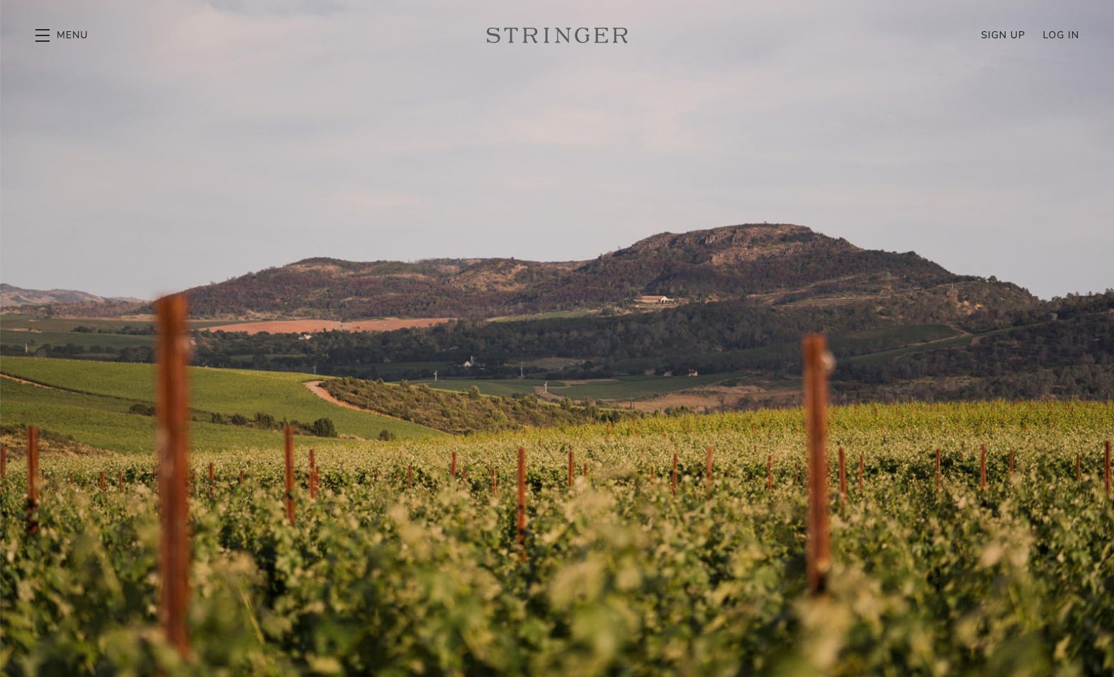 Stringer Cellars Website