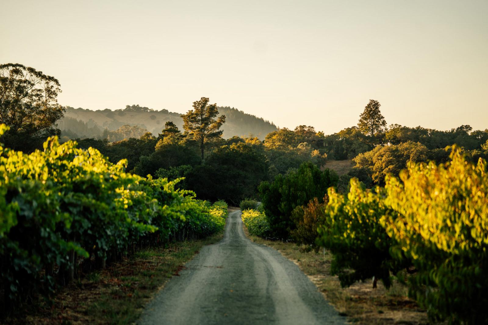 Martha's Vineyard
