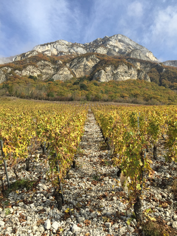 Getting to Know Savoie & Bugey