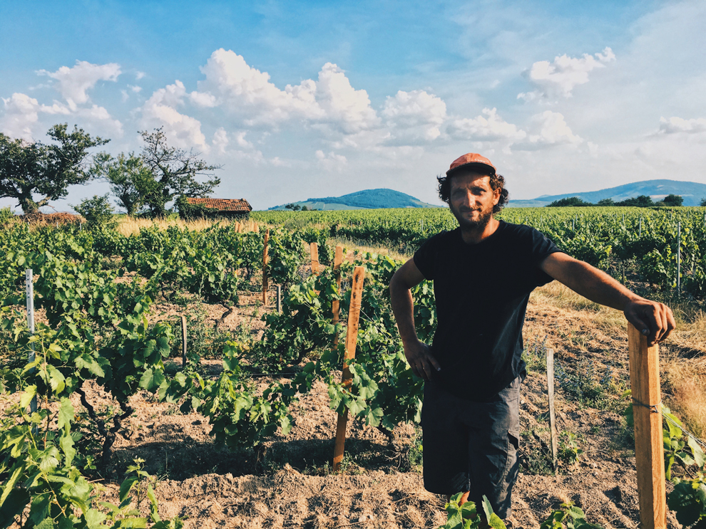 New Blood in Beaujolais -