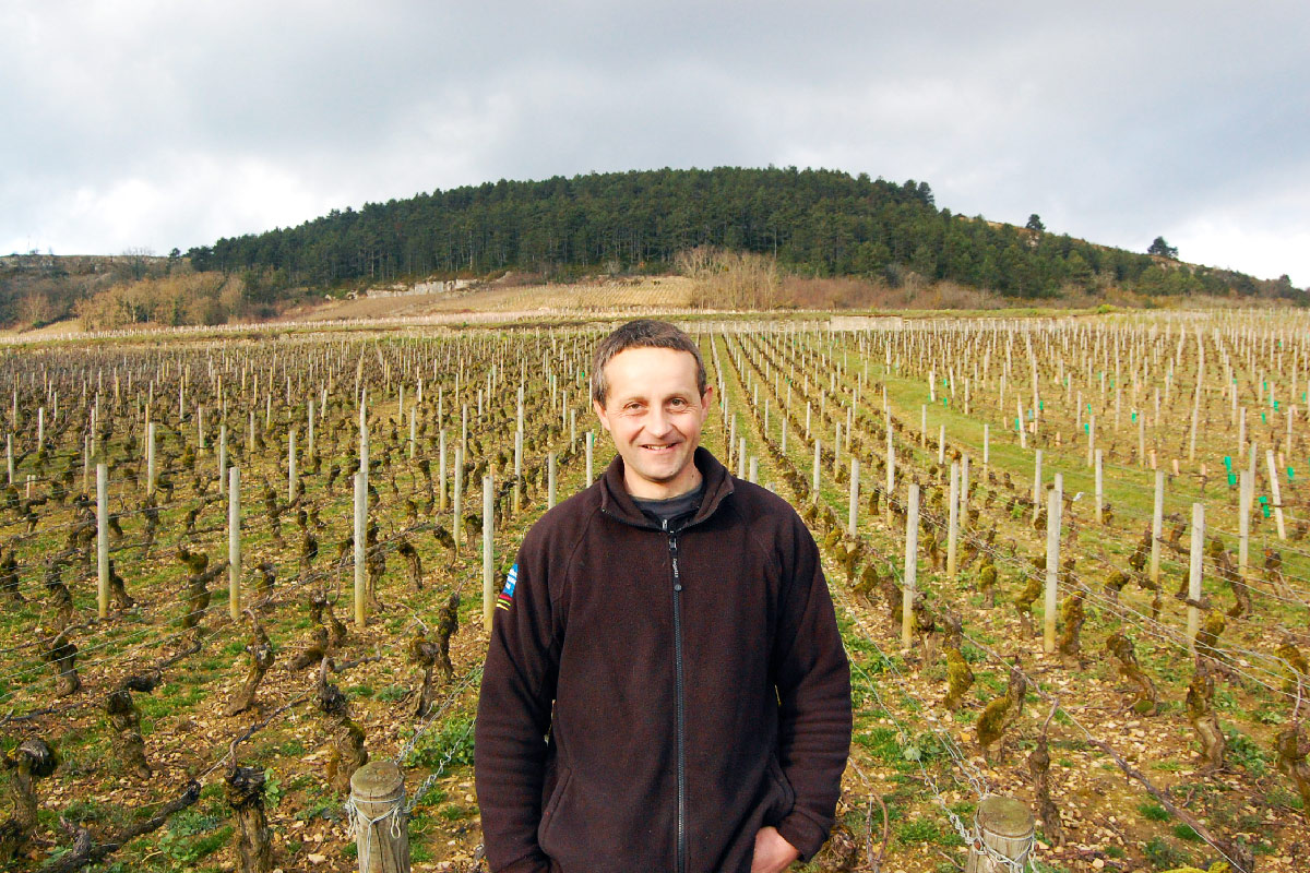 Producer - Domaine Jean-Claude Regnaudot
