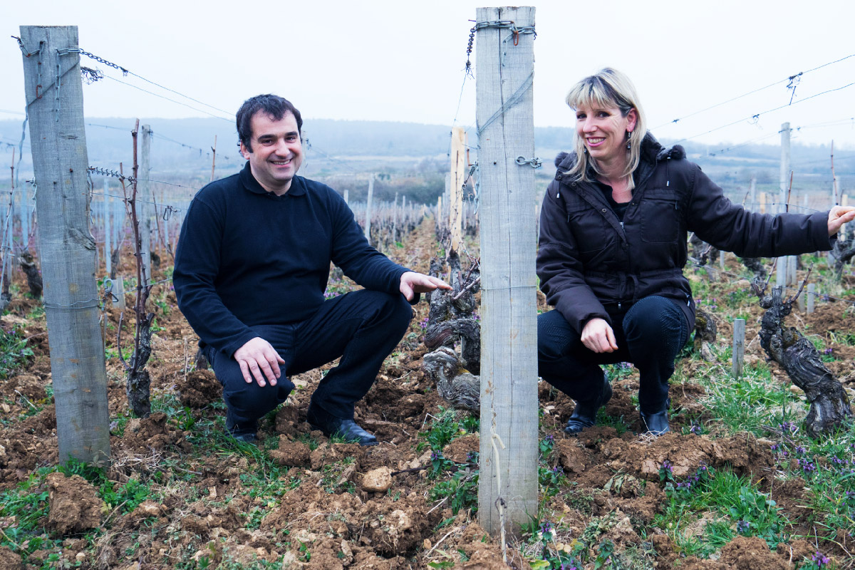 Producer - Domaine Jean-Marc Vincent