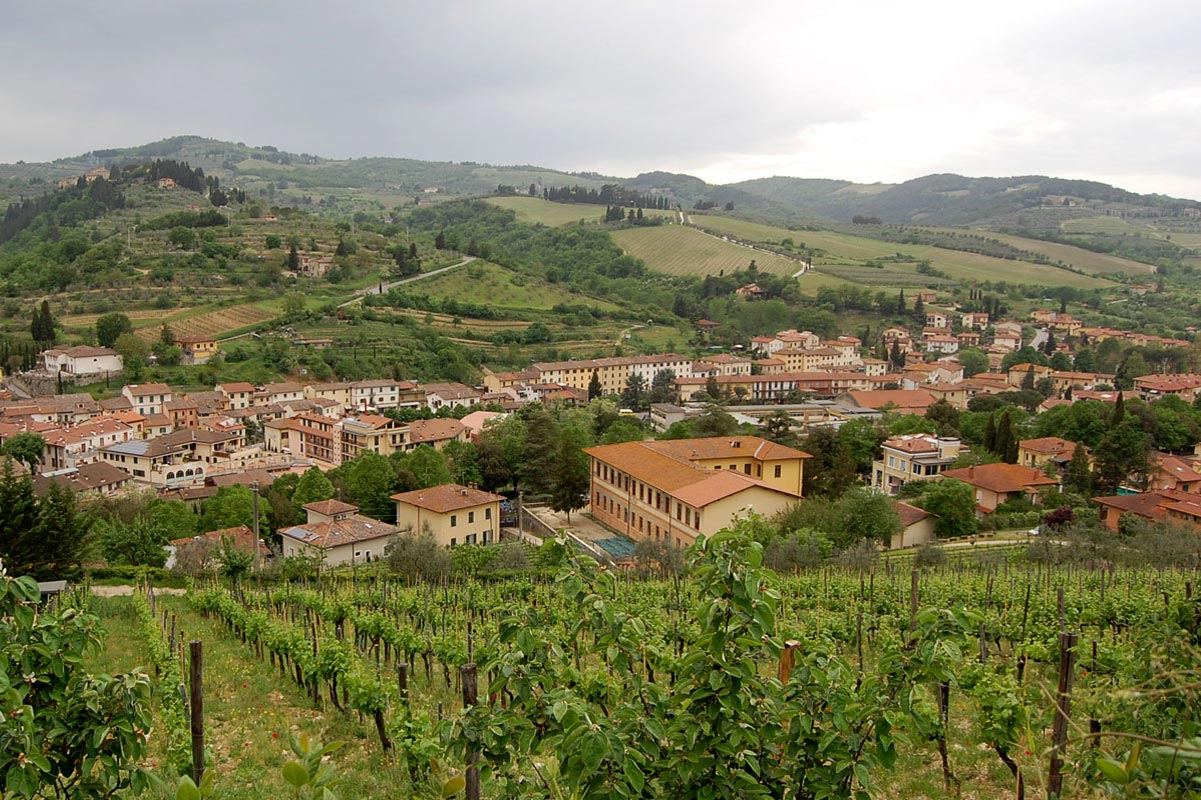 Producer - Podere Campriano