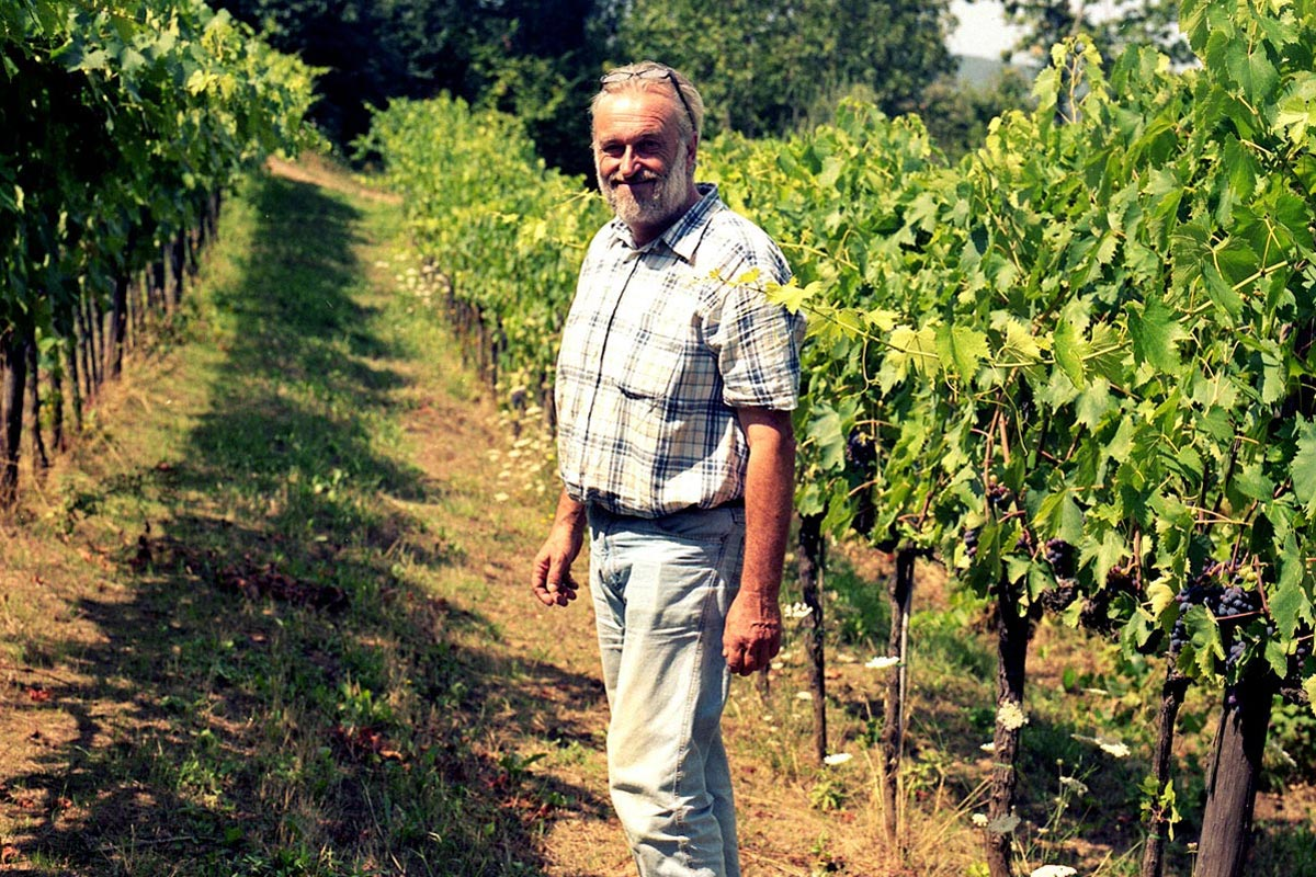 Producer - Podere Sante Marie